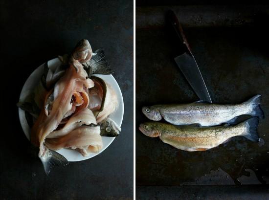 fish_pair